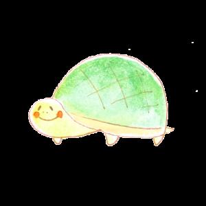 亀アイコン